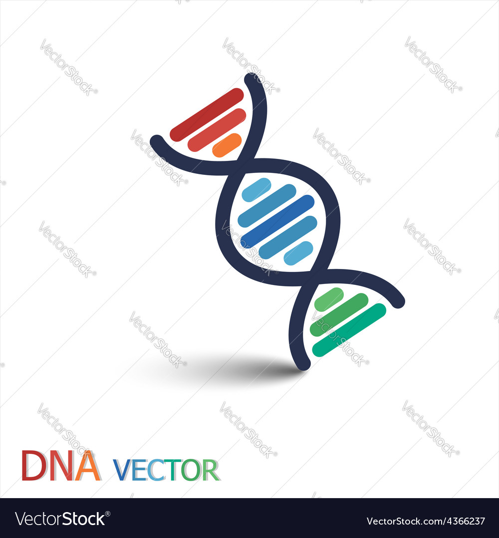 Dna deoxyribonucleic acid symbol double strand vector | Price: 1 Credit (USD $1)