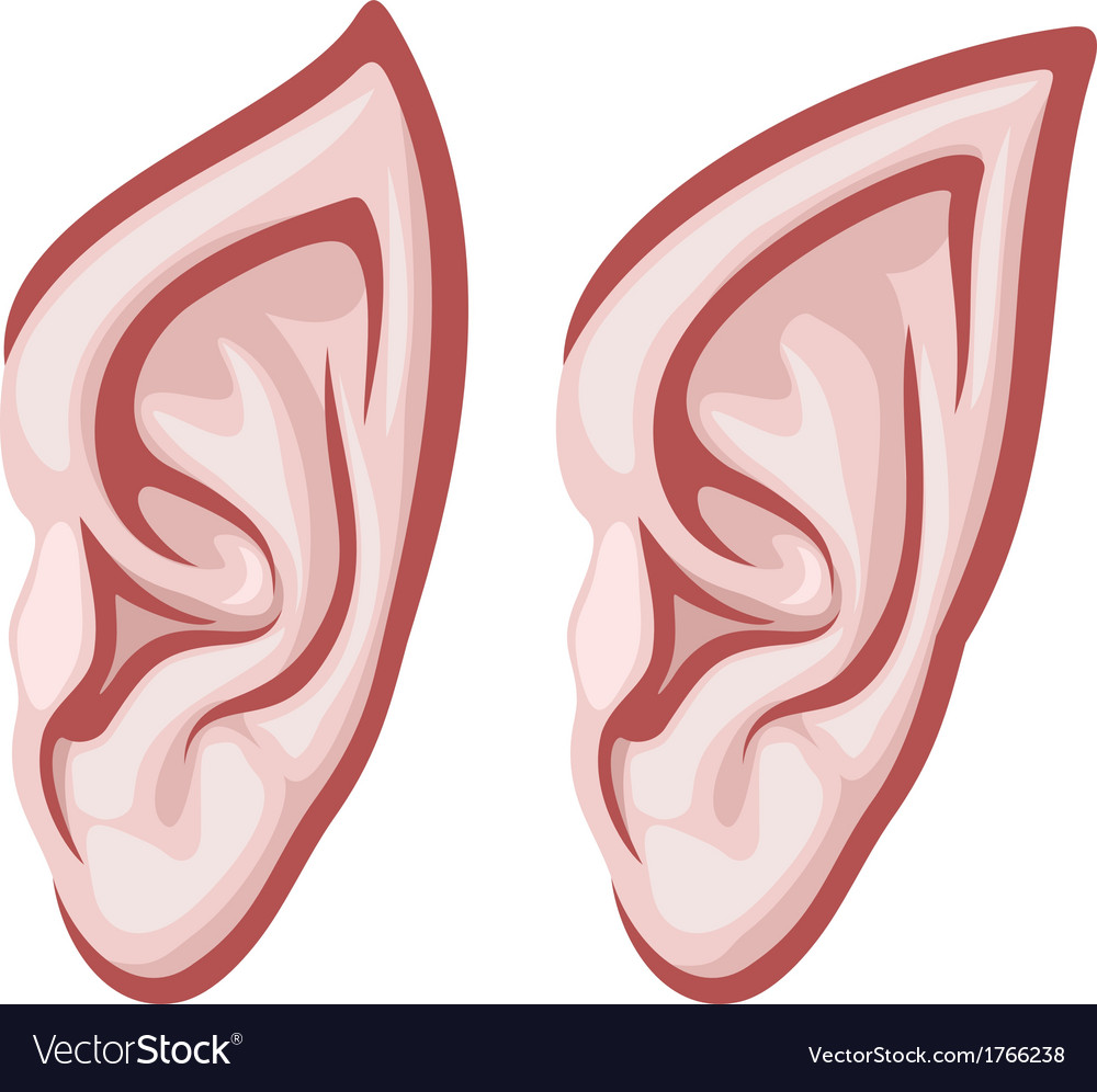 Elf ears vector | Price: 1 Credit (USD $1)