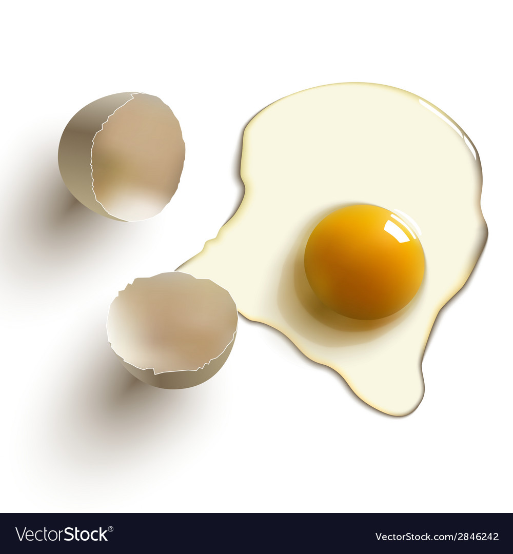 Cracked raw egg vector | Price: 1 Credit (USD $1)