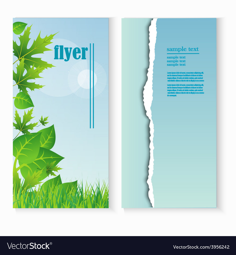 Flyer template with fresh green leaves and grass vector | Price: 1 Credit (USD $1)