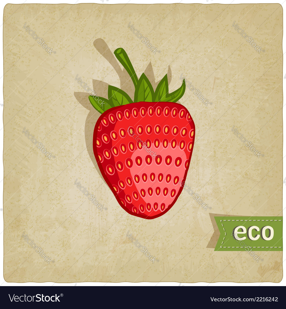 Strawberries eco background vector | Price: 1 Credit (USD $1)