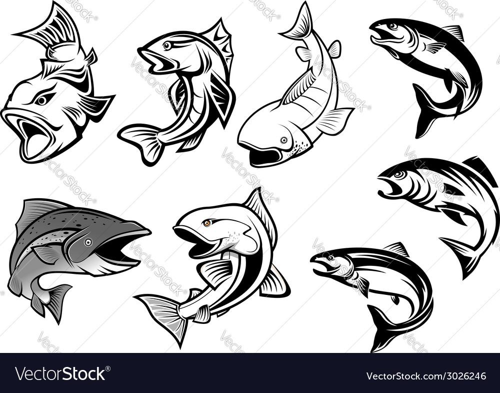Cartoon salmons fish set vector | Price: 1 Credit (USD $1)