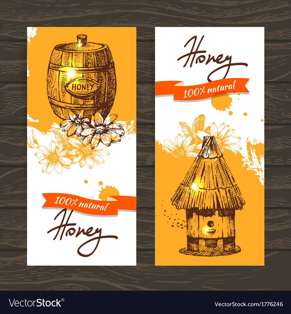 Set of honey banners with hand drawn sketch vector | Price: 1 Credit (USD $1)