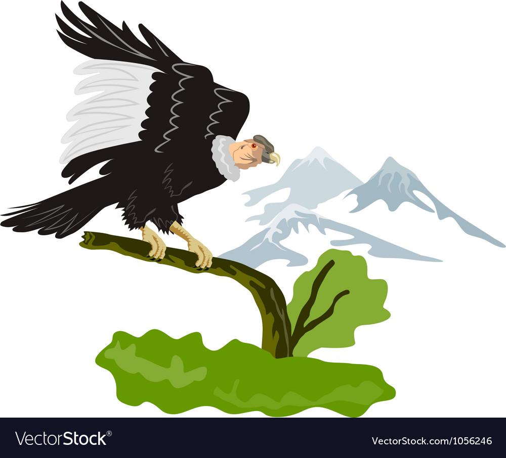 Vulture buzzard bird vector | Price: 1 Credit (USD $1)