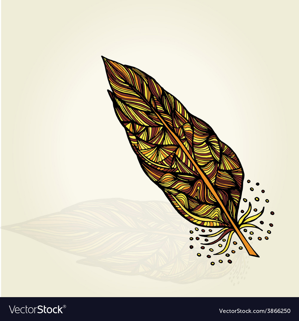 Decorative feathers vector | Price: 1 Credit (USD $1)