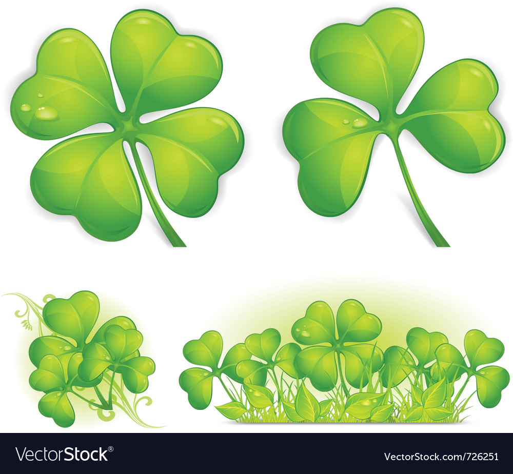 Four leaf clover vector | Price: 1 Credit (USD $1)