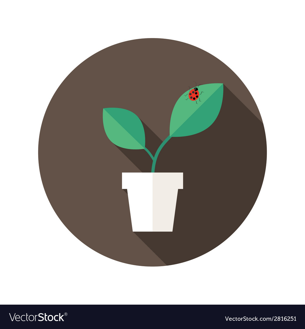 Pot with leaves and lady bug flat icon vector | Price: 1 Credit (USD $1)
