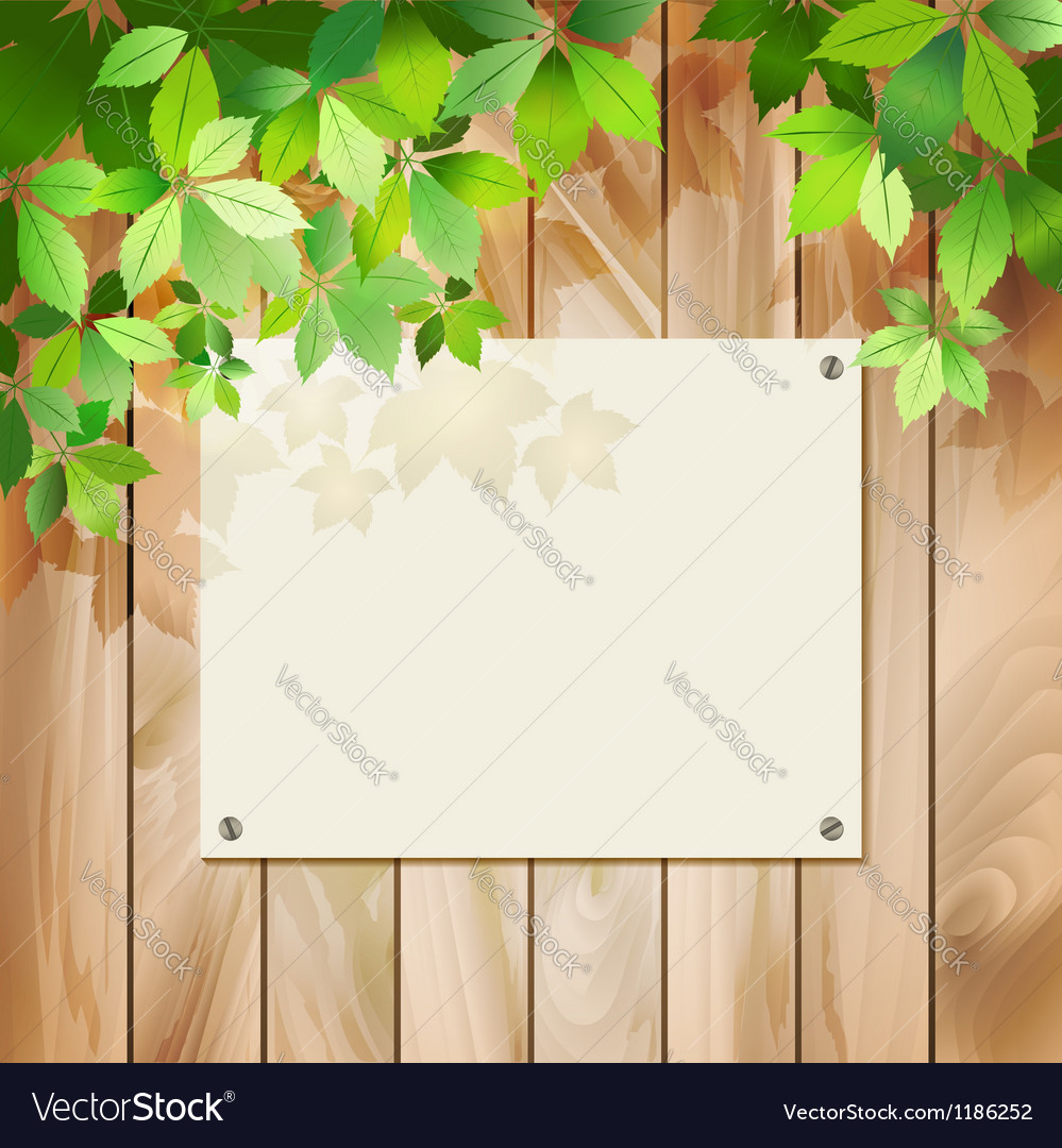 Green leaves on a wood texture background vector | Price: 1 Credit (USD $1)