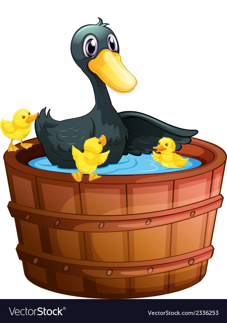 Ducks taking a bath vector | Price: 1 Credit (USD $1)