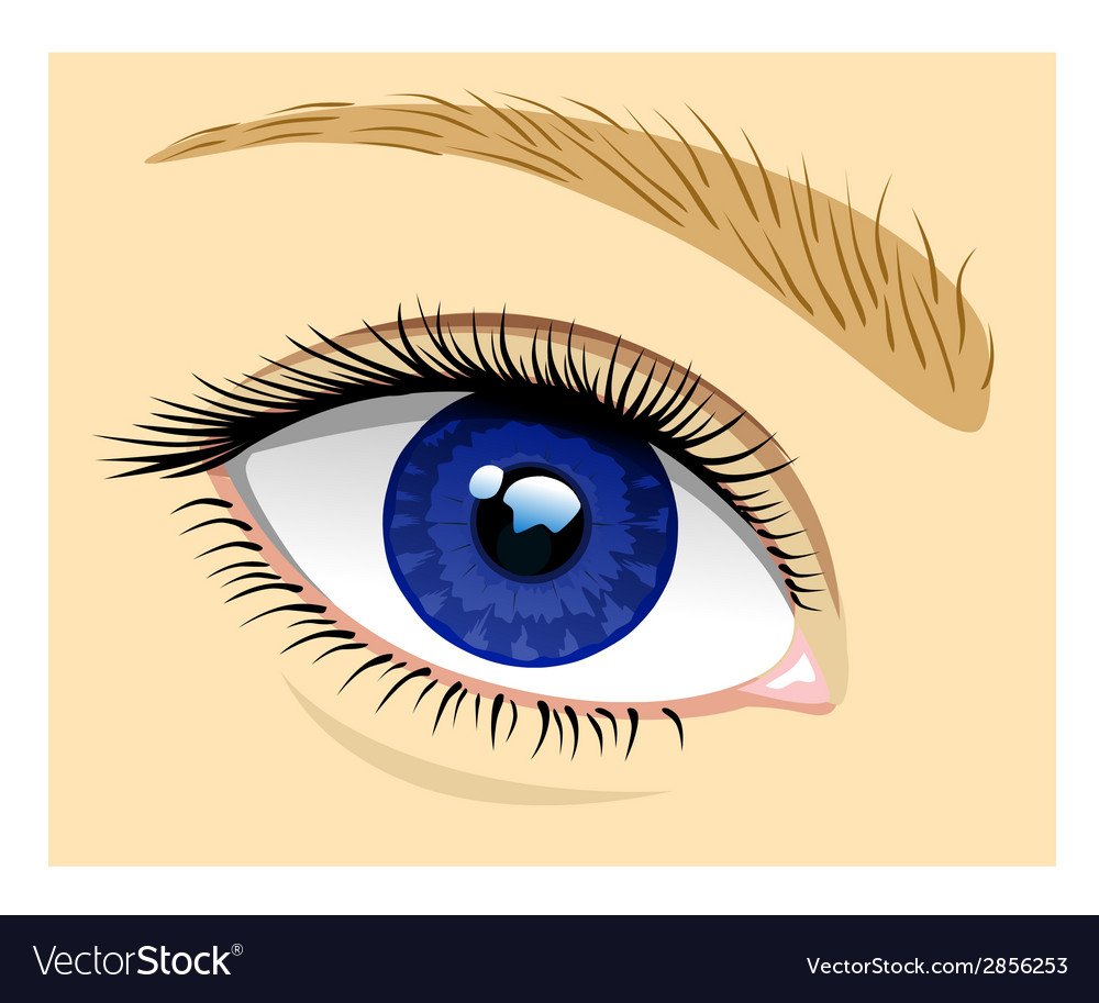 Healthy eye vector | Price: 1 Credit (USD $1)
