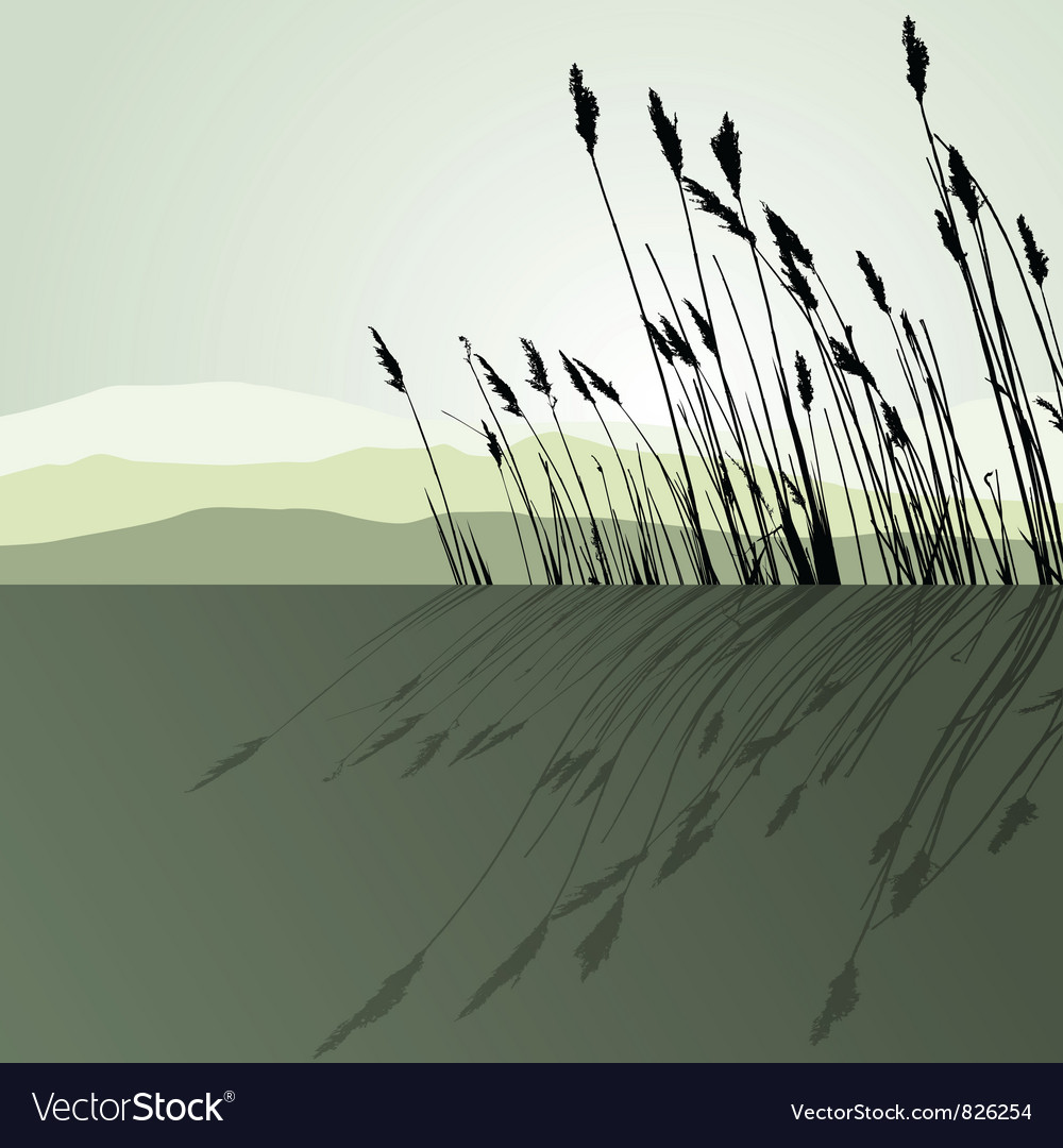 Reeds in the water - landscape vector | Price: 1 Credit (USD $1)