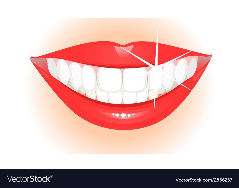 Healthy teeth vector | Price: 1 Credit (USD $1)