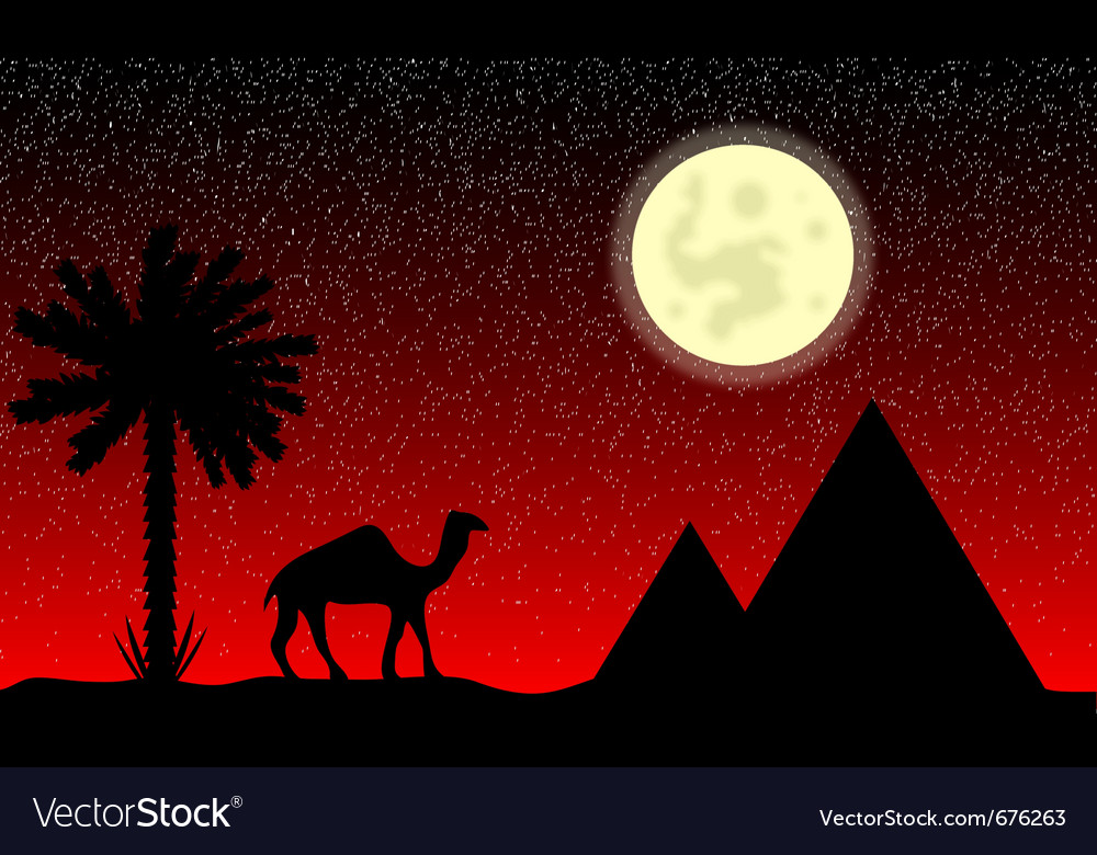 Night in egypt vector | Price: 1 Credit (USD $1)