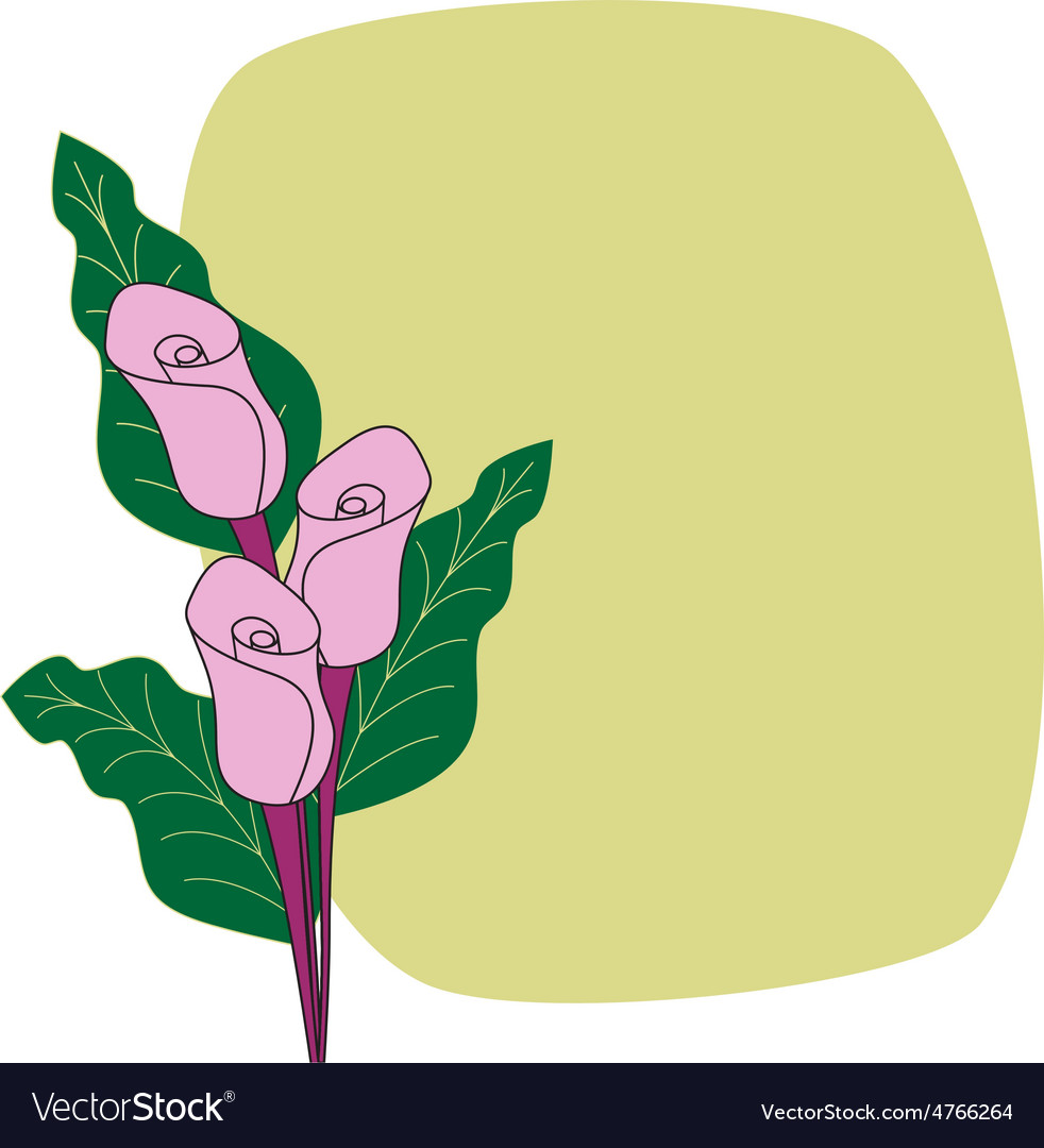 Calla lilies border cardflower card vector | Price: 1 Credit (USD $1)