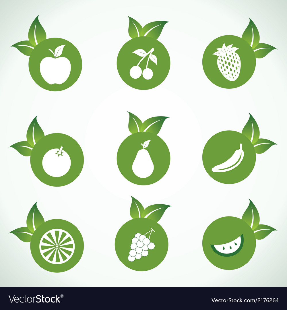 Different fruit icons and design with green leaf vector | Price: 1 Credit (USD $1)