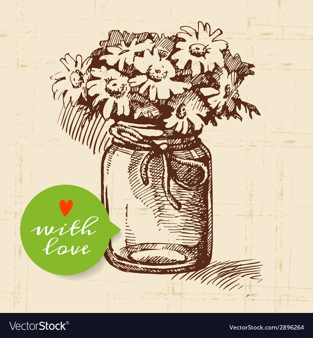 Rustic mason canning jar vintage hand drawn sketch vector | Price: 1 Credit (USD $1)