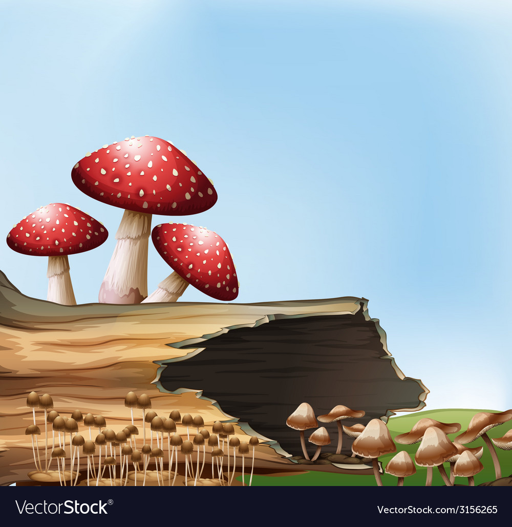 A mushroom above the stump vector | Price: 1 Credit (USD $1)