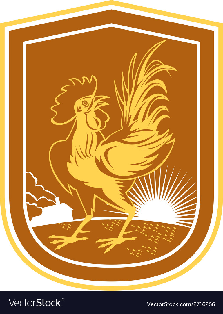 Chicken rooster house sunburst shield retro vector | Price: 1 Credit (USD $1)