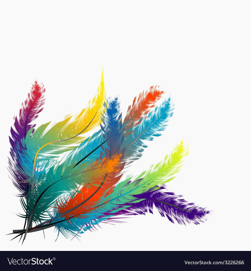 Colorful feathers background vector | Price: 1 Credit (USD $1)