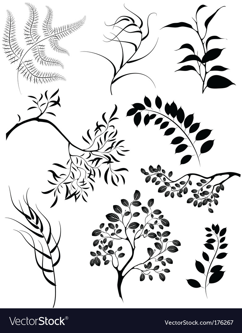 Floral silhouettes vector | Price: 1 Credit (USD $1)