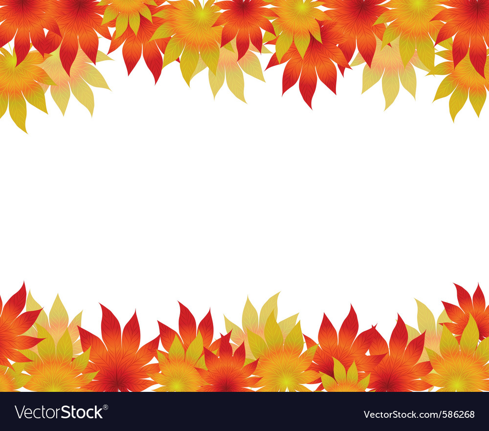 Autumn maple leaves on a white background vector | Price: 1 Credit (USD $1)