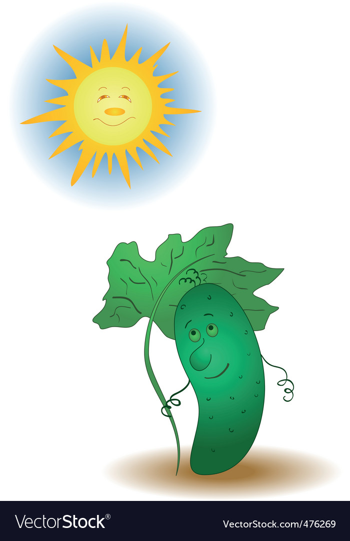 Cucumber and the sun vector | Price: 1 Credit (USD $1)