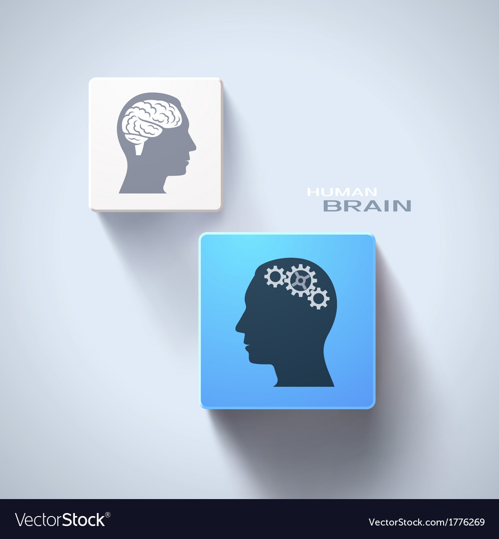 Human brain concept vector | Price: 1 Credit (USD $1)