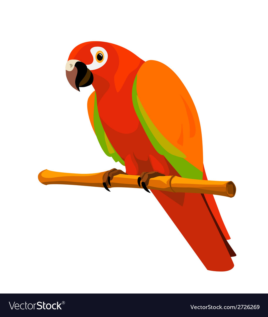 Red parrot on a perch vector | Price: 1 Credit (USD $1)