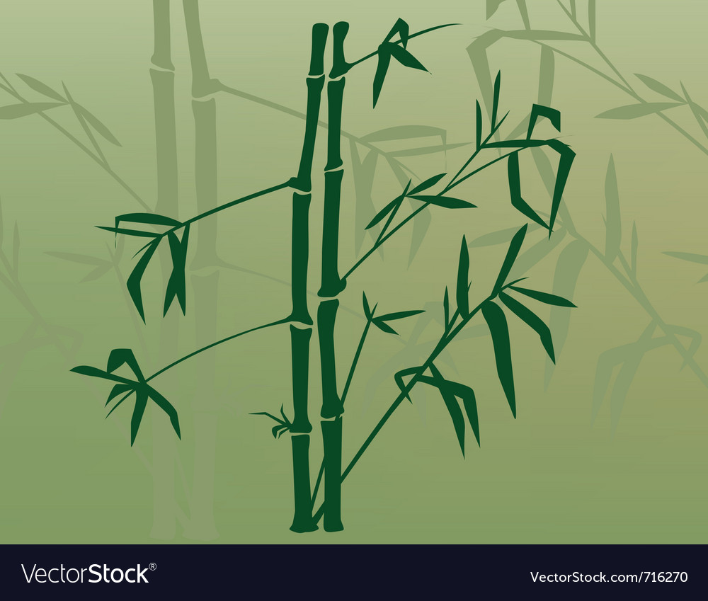 Bamboo in the mist vector | Price: 1 Credit (USD $1)