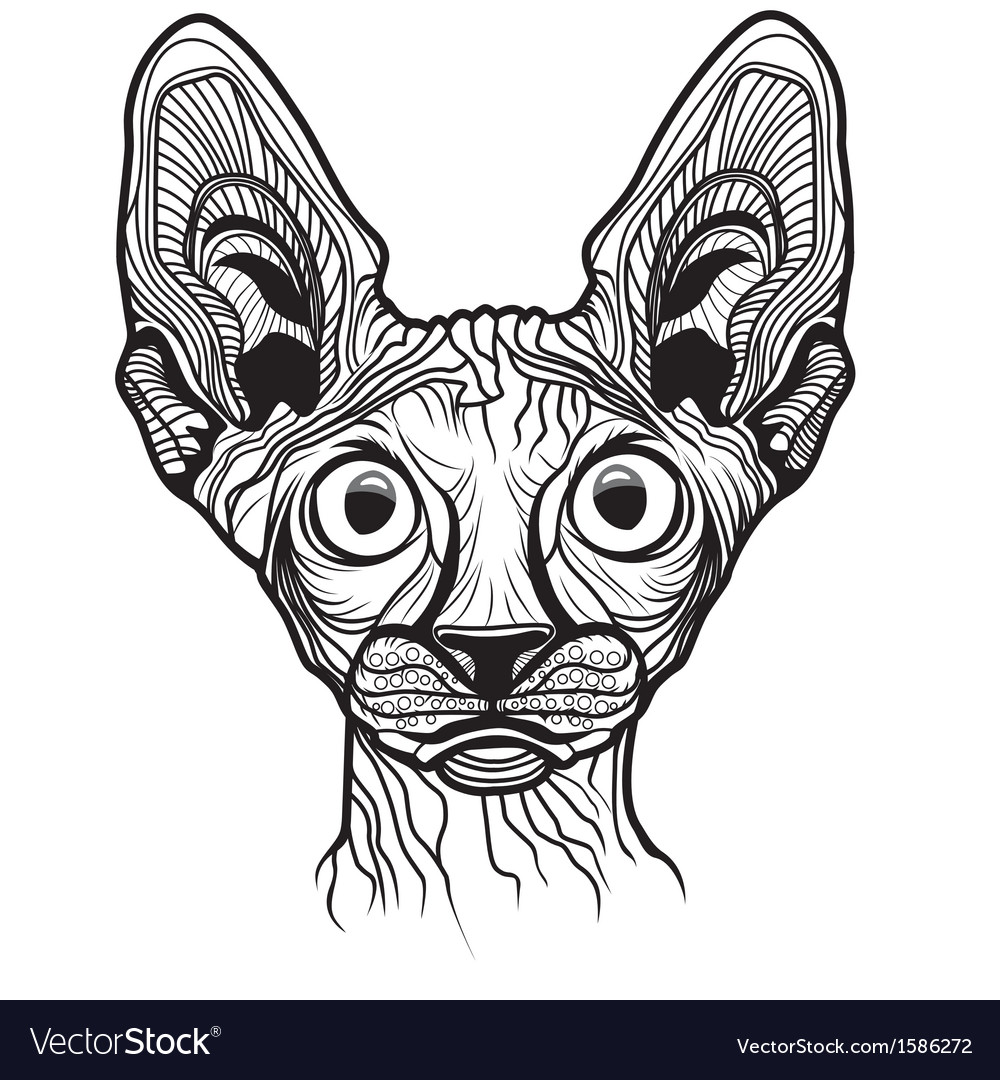 Cat head animal vector | Price: 1 Credit (USD $1)