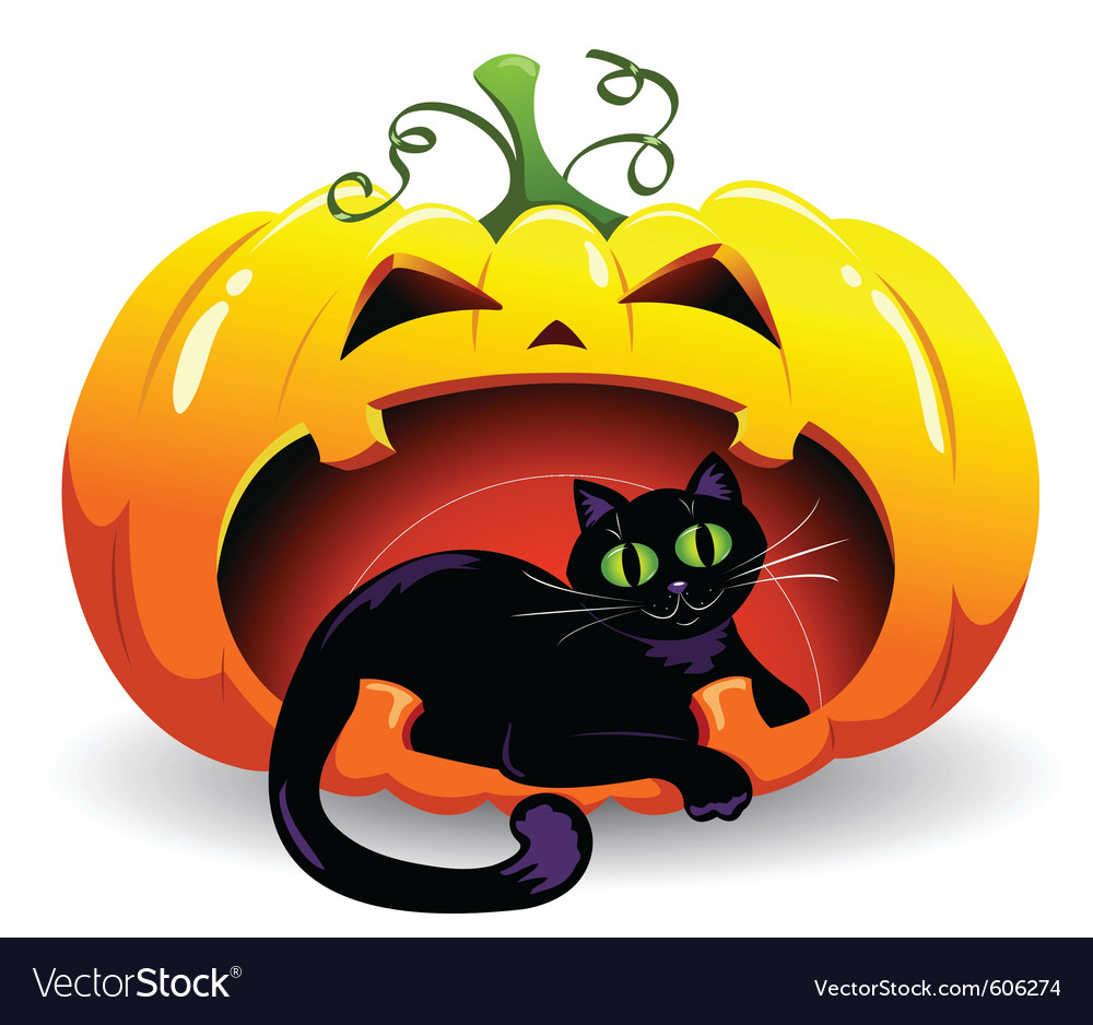 Pumpkin and cat vector | Price: 3 Credit (USD $3)