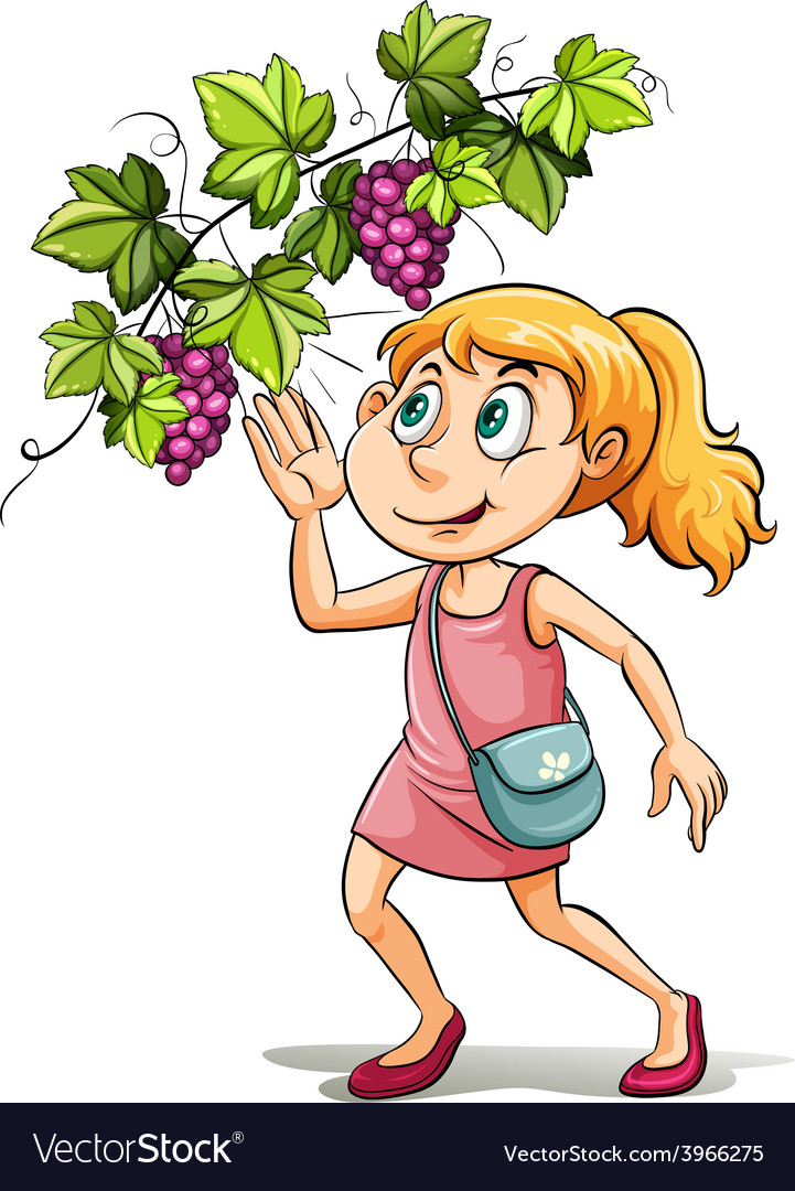A girl and a grapevine vector | Price: 1 Credit (USD $1)