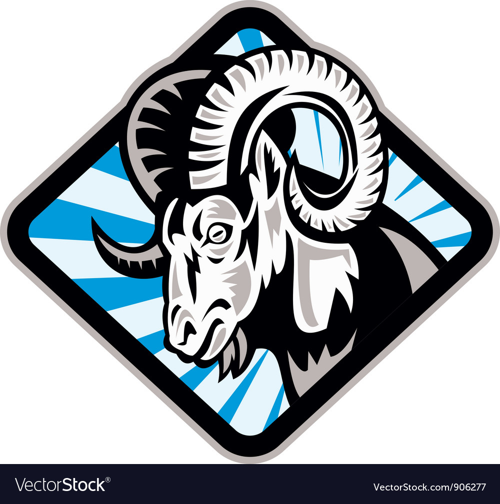 Bighorn ram sheep goat vector | Price: 3 Credit (USD $3)