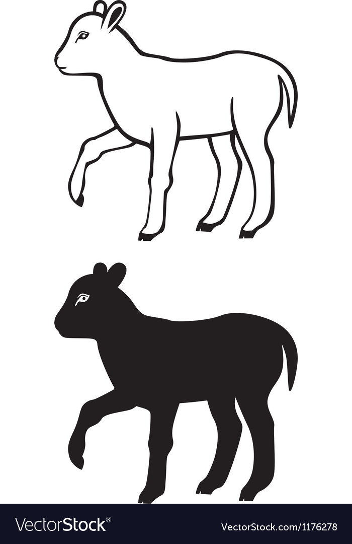 Lamb contour vector | Price: 1 Credit (USD $1)