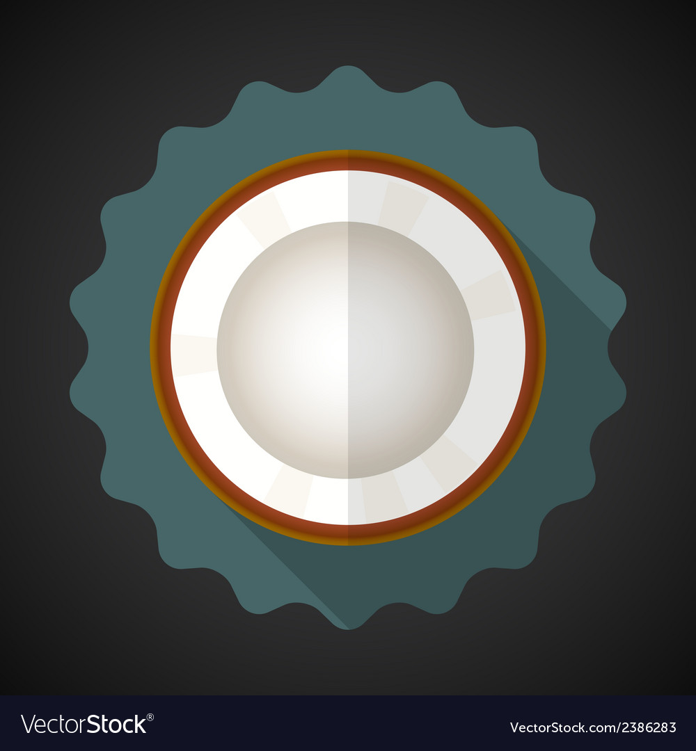 Coconut fruit flat icon with long shadow vector | Price: 1 Credit (USD $1)