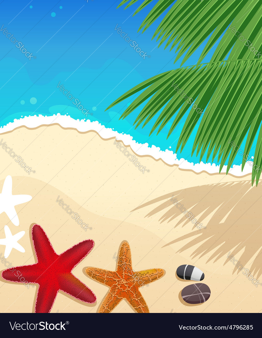 Beach with starfishes vector | Price: 3 Credit (USD $3)