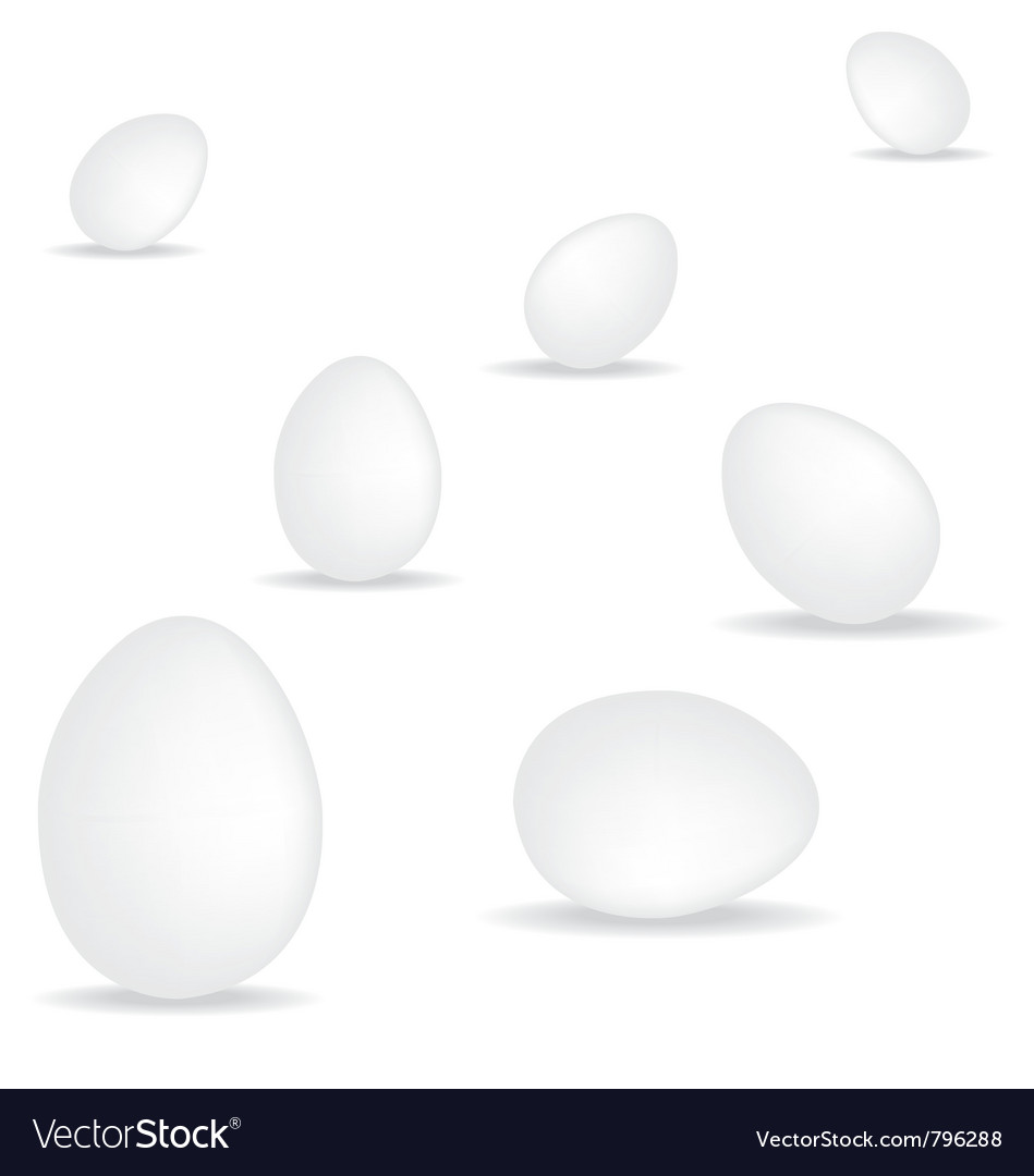 Egg on white background vector | Price: 1 Credit (USD $1)