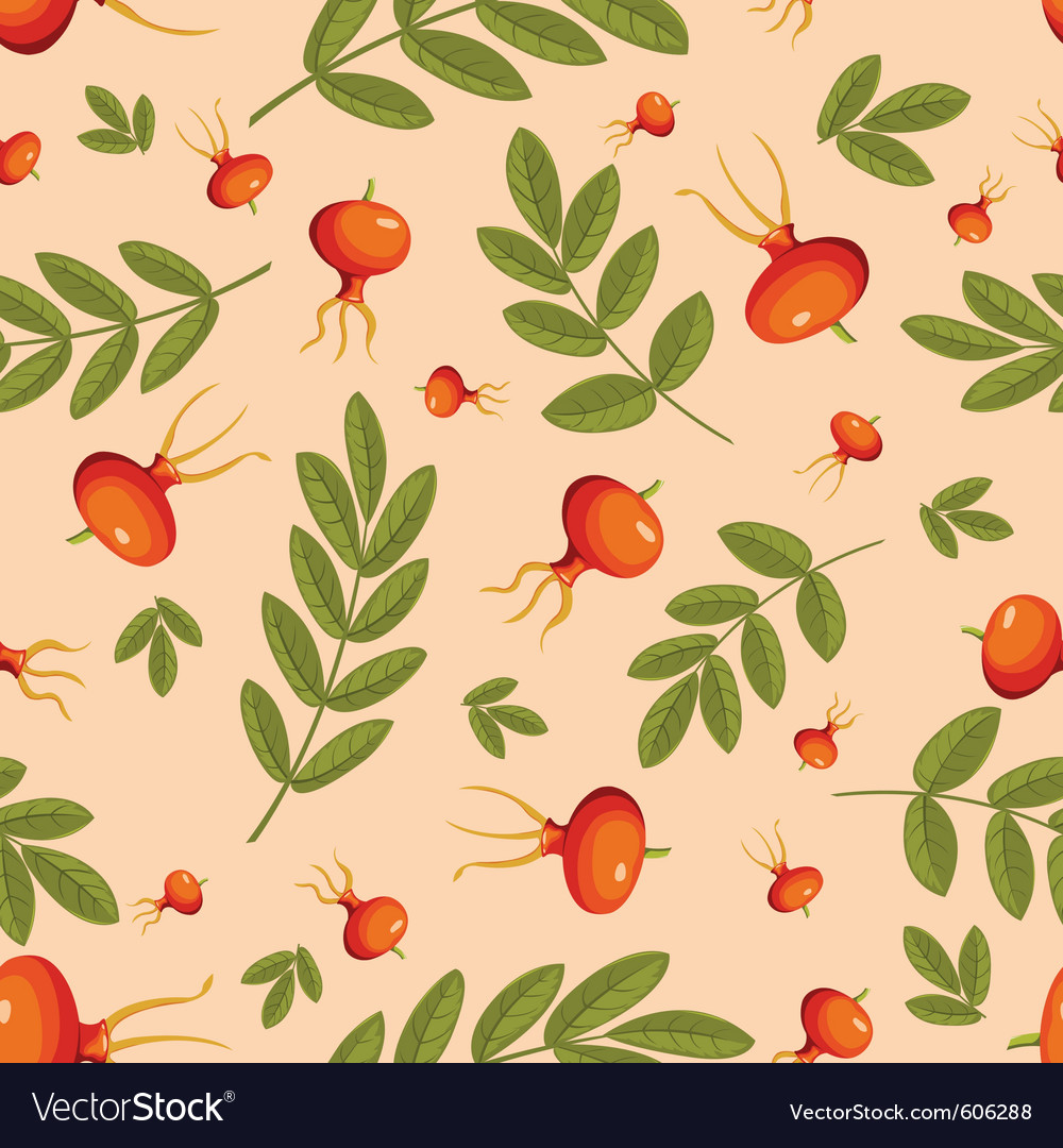 Rose hip seamless vector | Price: 1 Credit (USD $1)