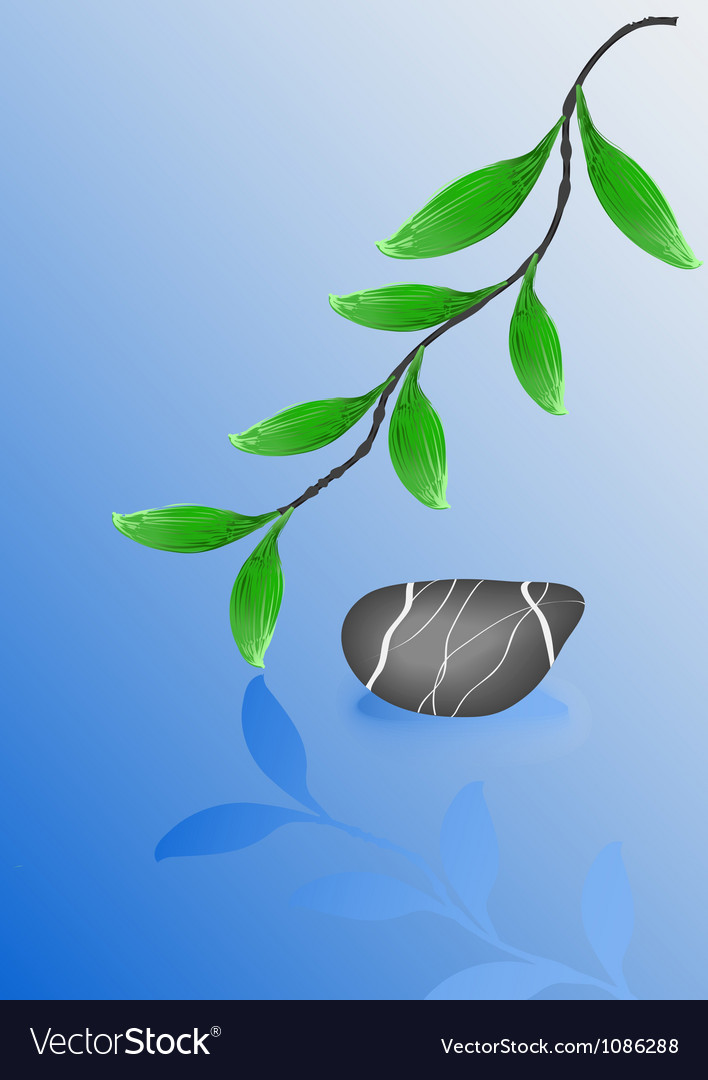Wet pebble stone and green leafs vector | Price: 1 Credit (USD $1)
