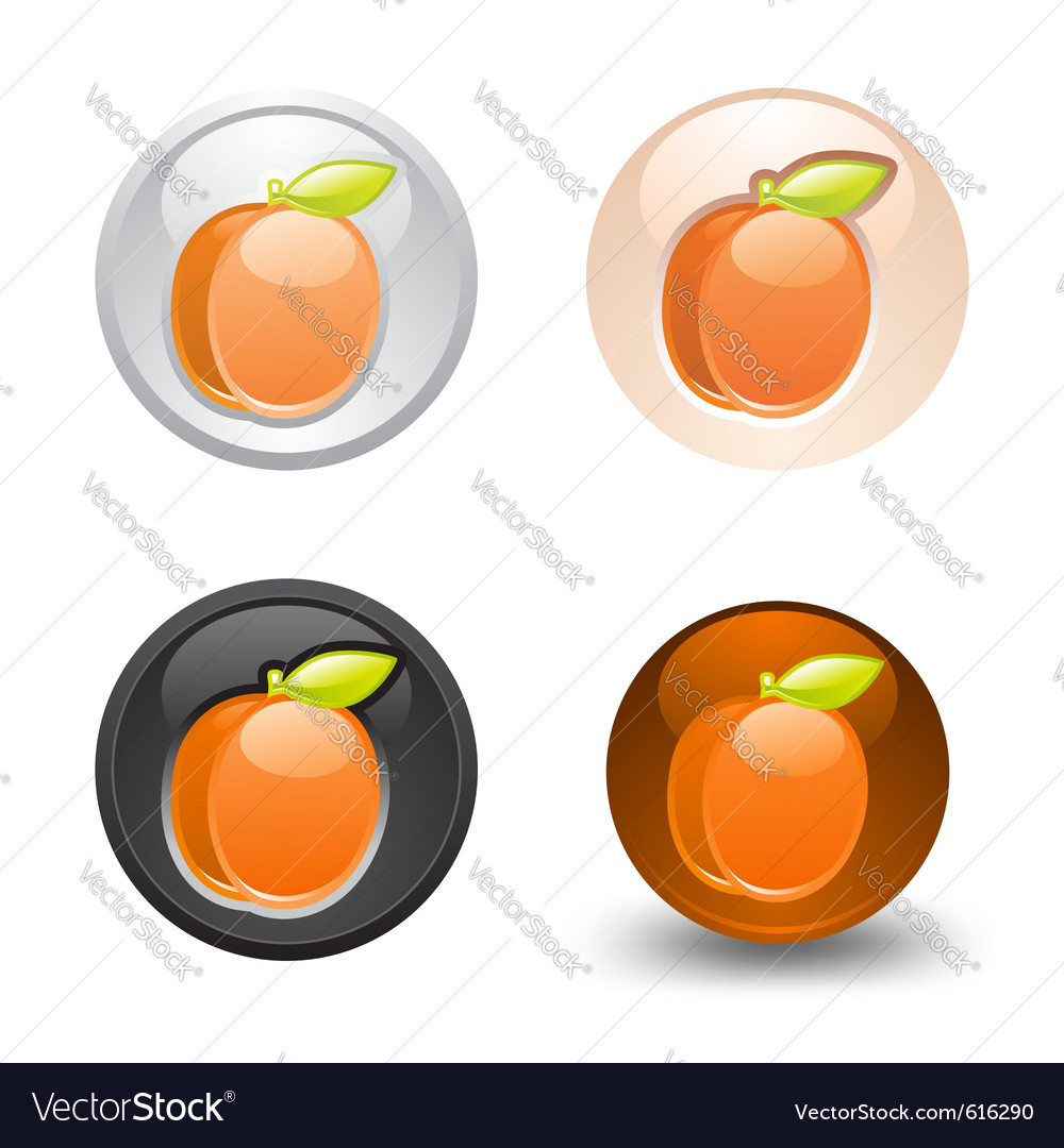 Apricot button set web 20 icons vector | Price: 1 Credit (USD $1)