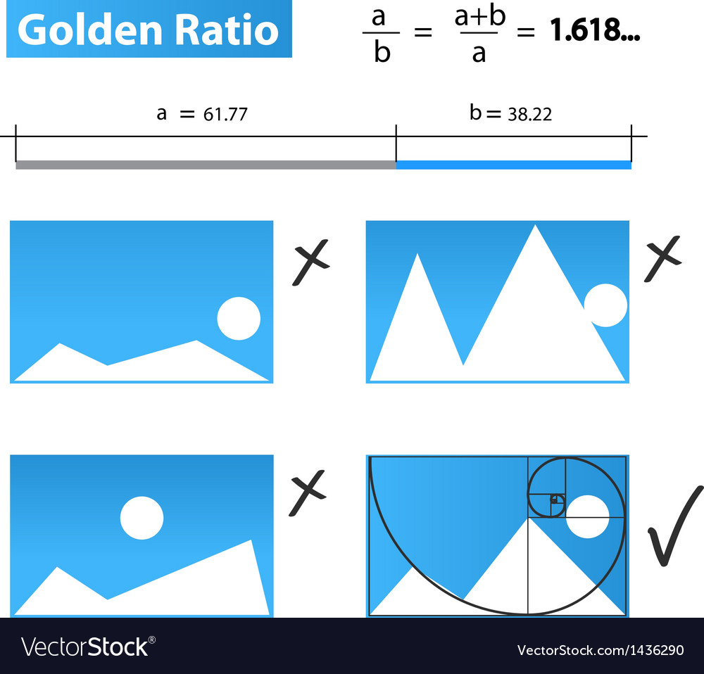 Golden ratiogolden proportion vector | Price: 1 Credit (USD $1)