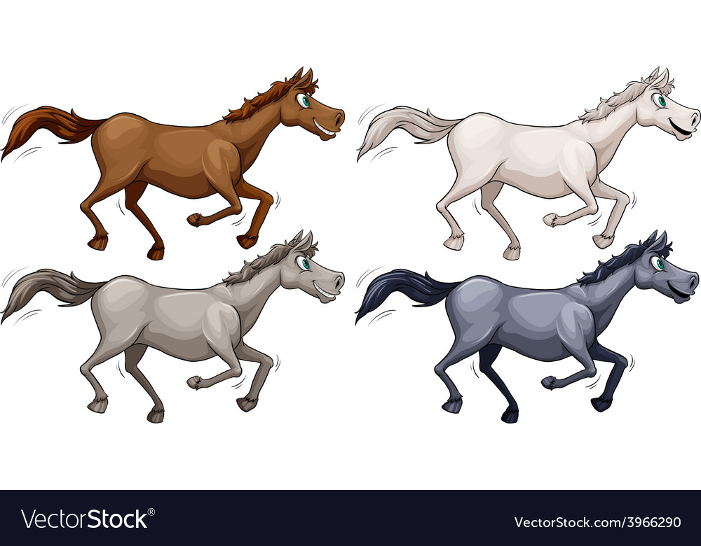 Wild horses vector | Price: 1 Credit (USD $1)