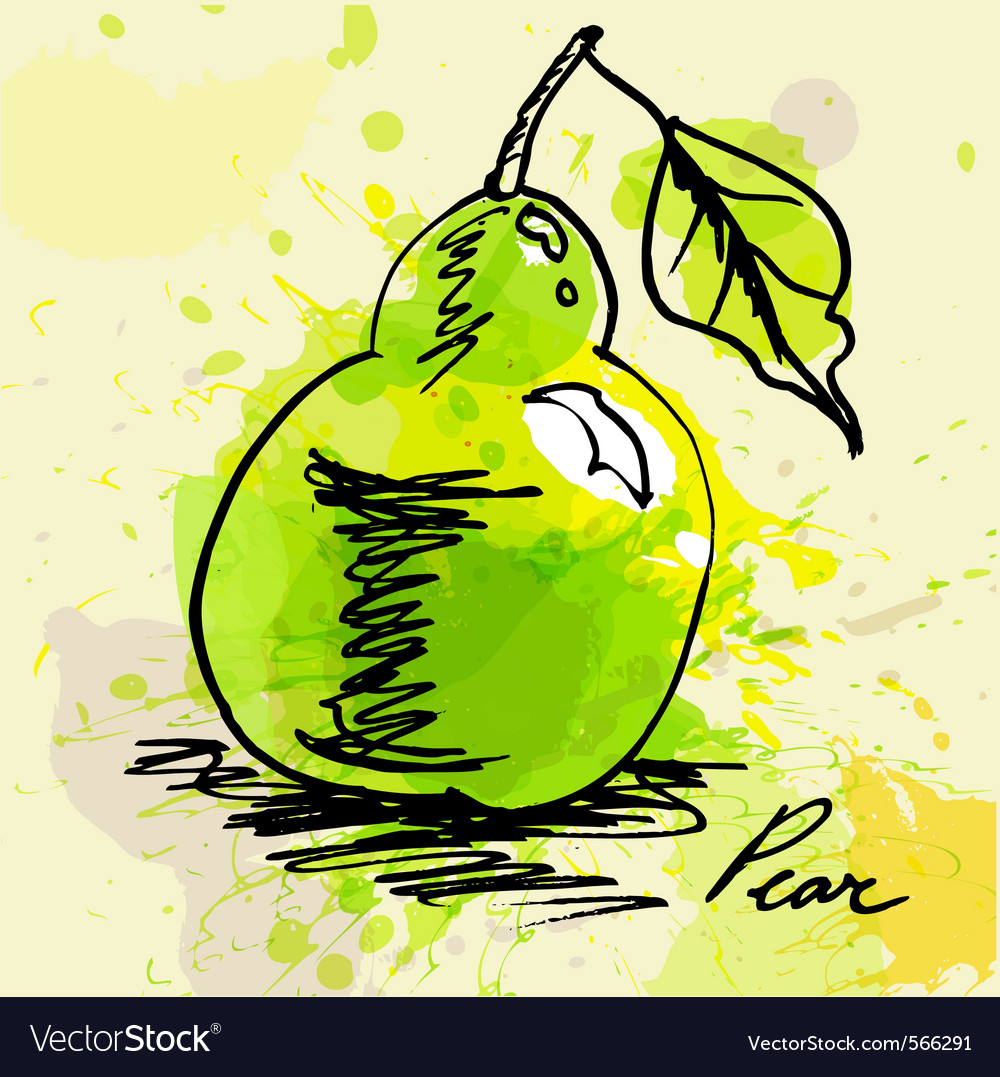 Stylized pear vector | Price: 1 Credit (USD $1)