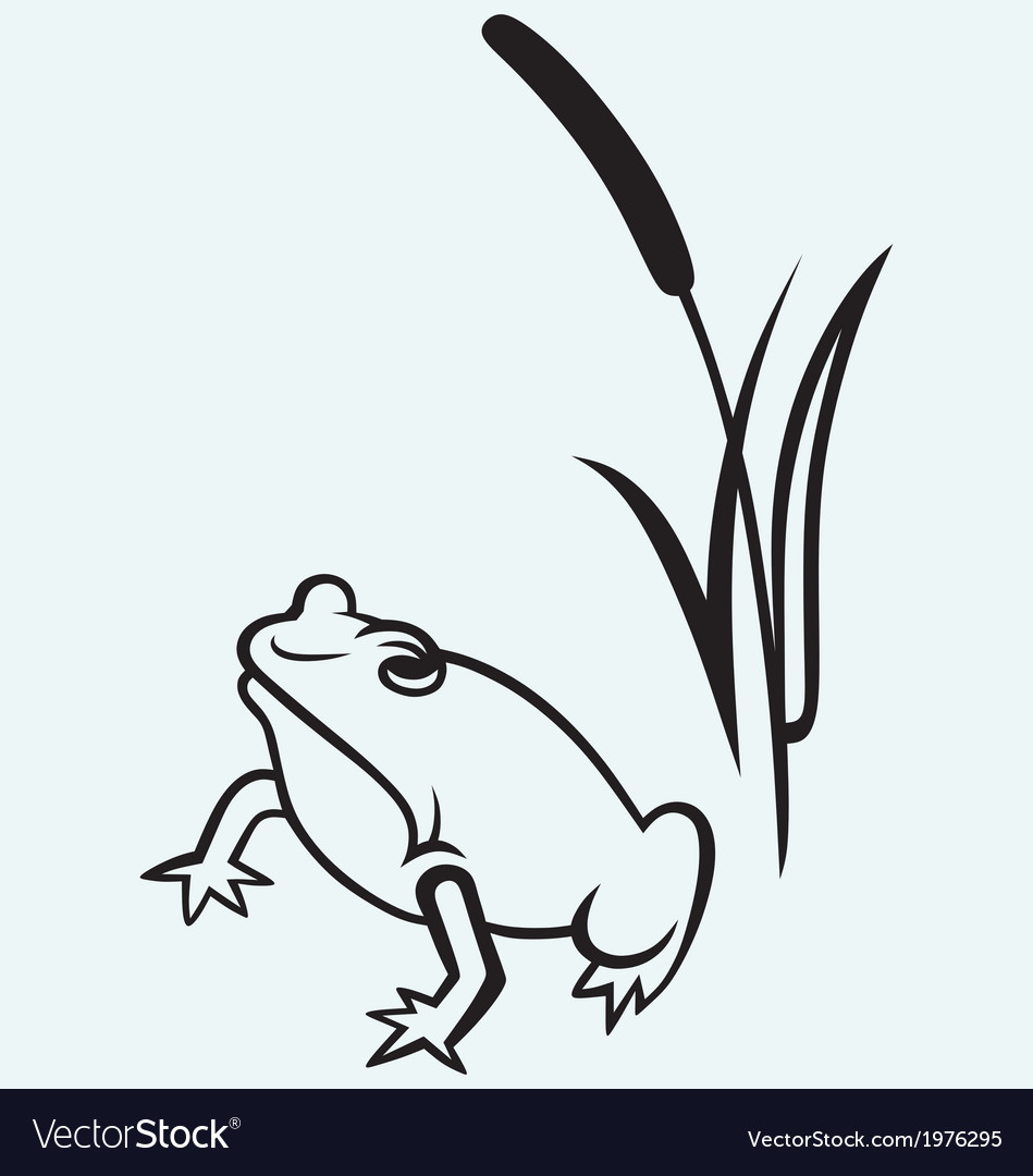 Frog near reed vector | Price: 1 Credit (USD $1)