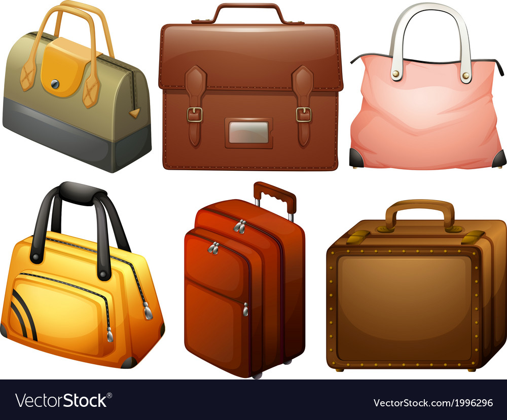 Different types of bags vector | Price: 1 Credit (USD $1)