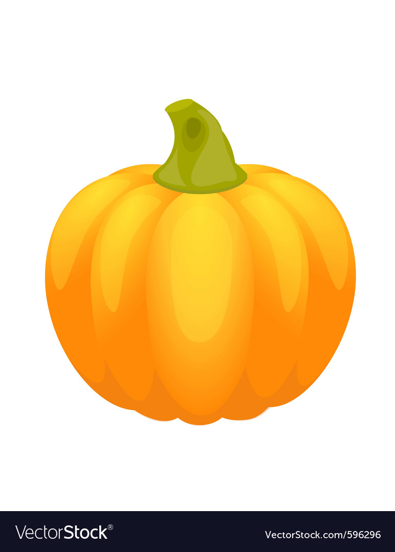 Pumpkin for halloween and autumn on white backgrou vector | Price: 1 Credit (USD $1)