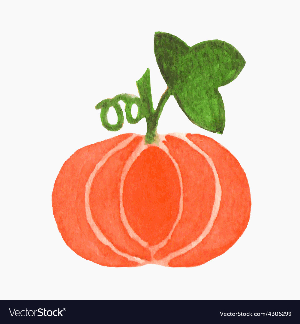 Hand-drawn pumpkin real watercolor drawing vector | Price: 1 Credit (USD $1)