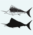 Sailfish saltwater fish vector