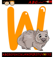 Letter w for wombat cartoon vector