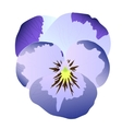 Blue pansy vector